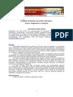 2-Acidentes Estruturais Em Pontes Rodoviárias - Causas, Diagnósticos e Soluções