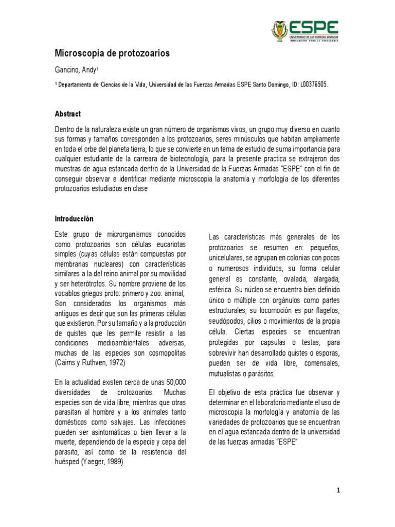 Dorable La Práctica Libre De Laboratorio De Anatomía Elaboración ...