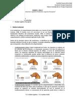 AD2-2 Modelos E-T, Conductual, Cognitivo-Conductual, Cognitivo-Perceptual