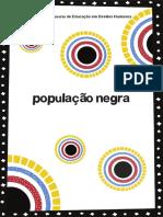 População Negra