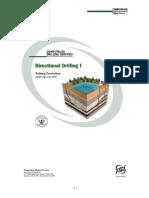 72484847-Manual-Perfo-Direc.doc