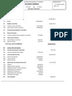 Balance general 2012.pdf