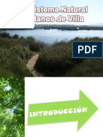 30421757 Pantanos de Villa