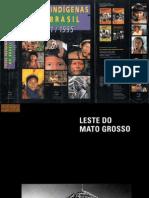 Povos Indígenas no Brasil 1991-1995 (parte 4)