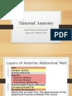 Maternal Anatomy Williams