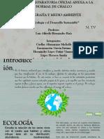 La Ecologia y El Desarrollo Sustentable - Equipo 6
