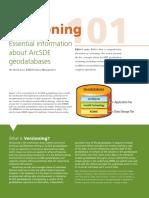 versioning101.pdf