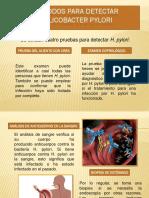 Geronimo - Métodos Para Detectar Helicobacter Pylori