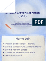 180636450 Sindrom Stevens Johnson Ppt