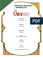 Trabajo Ana Luisa - Informe de Evaluación Psicológica