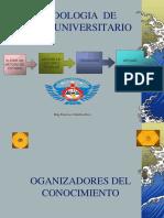 Organizadores Del Conocimiento-ojo