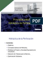 22 Principios de Hidráulica de Perforación.pdf