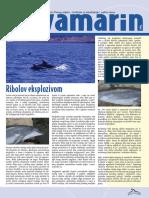 Akvamarin 2004 Hr