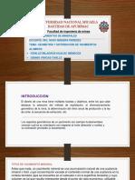 1RO Geometría y Distribución de Leyes