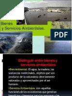bienesyserviciosambientales-121202191041-phpapp01