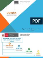 Uspnna 2017 - Presentacion a Pucp