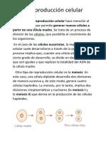 La noción de Reproduccion celular.docx