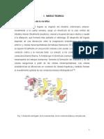 400594.pdf