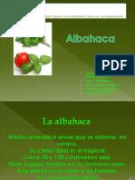 La Albahaca