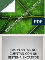 excrecion plantas