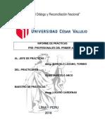 Portafolio de Practicas Pre Profesionales (3) (4)
