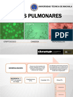 micosispulmonares-120317104330-phpapp01