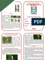 Diptico Ecosistema de La Selva