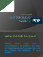 sustentabilidadeambiental3-130217140028-phpapp02