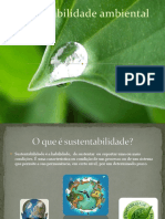 sustentabilidadeambiental-110502130525-phpapp02.pptx