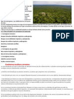 Cuáles Son Las Ecorregiones de Guatemala