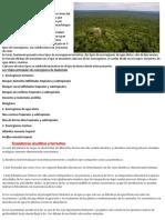 Cuáles son las Ecorregiones de Guatemala.docx