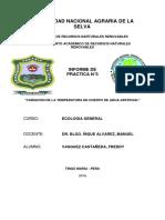 Vasquez Castañeda, Freddy Informe 3
