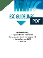 esc guide