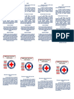 Red Cross Youth Pledge, Vision & Mission