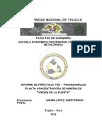 Informe de Prácticas Pre-Profesionales UNT 2014 - Marin López Gsefferson Pavel..docx