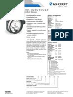 Datasheet Differential Gauge 1131