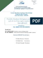 Rapport Pfe Salah (PDF)