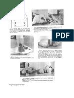 Tes Guinea Pig Maximization
