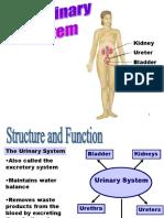 Pathology of Urinary System