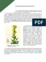 plantas mágicas_