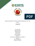 2da Consulta Grupo 2