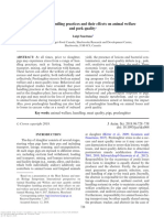 Preslaughter Handling Practices and Their Effects on Animal Welfare in PIGS