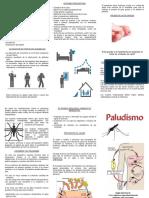 TRIPTICO  PALUDISMO.pdf