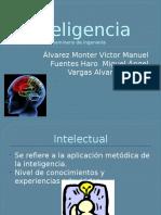 Exp Inteligencia