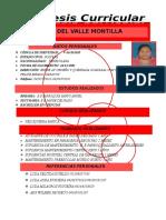 Sintesis Curricular Carolina Montilla Travieso (1)