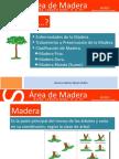 ÁREA DE MADERA