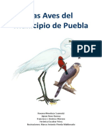 LasAvesDelMunicipioDePuebla.pdf