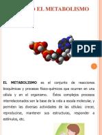 222-1. METABOLISMO (1)