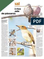 semiarido.pdf