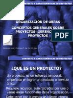 1. contexto y caracter�sticas de los proyectos